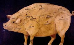 Parts of the pig (my fav meat)! lol!