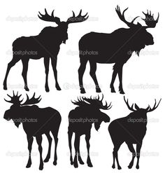 moose antlers silhouette - Google Search