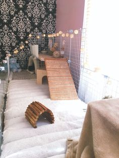 Buy The Right Size Guinea Pig Cage. Photo by maskarade Purchasing a guinea pig cage in a pet shop is unfortunately a good way to ensure that it is in fact too small for your pet's needs. Diy Guinea Pig Cage, Guinea Pig Hutch, Guinea Pig House, Pet Guinea Pigs, Guinea Pig Care, Pet Pigs, Rabbit Cages, Bunny Cages, Diy Bunny Cage