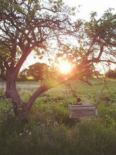 #geluksmoment: Dat het weer 'licht' begint te worden buiten - Het bewijs dat de lente in aantocht is! Het is niet meer donker als we 's ochtends naar ons werk gaan en als we thuiskomen pikken we nog net een zonnestraaltje mee. Precies genoeg om te starten met dagdromen over lange zomeravonden.