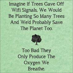 WiFi-trees