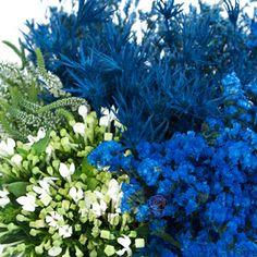 Blue-bunches of thistle, statice, limonium, delphinium and bouvardia flowers