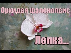 Орхидея фаленопсис. Лепка. Полимерная глина. Polymer clay.Orchid. - YouTube