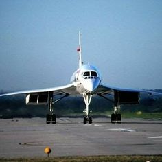 Concorde, Airplane, Aircraft, Bird, Vehicles, Plane, Aviation, Rolling Stock, Airplanes