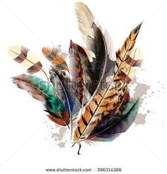 Fashion vector  background with colorful feathers