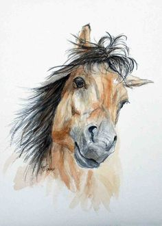 Pretty Buckskin horse - I Want to Play - A cute little mare - print of my original watercolor
