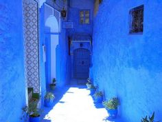 OMB oh my blue ! http://picmedi.com/entry/0000002637/