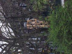 Vista geral do Parque Ibirapuera + Pavilhão. Torre pertencente a obra de Nydia em meio `as árvores do parque.