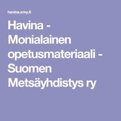 Havina - Monialainen opetusmateriaali - Suomen Metsäyhdistys ry Weather, Science, Weather Crafts
