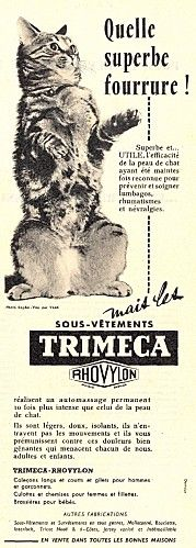 Vintage French ad, a charming cat speaking french