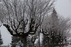 Snowing.... snowing... snowing in Villars !