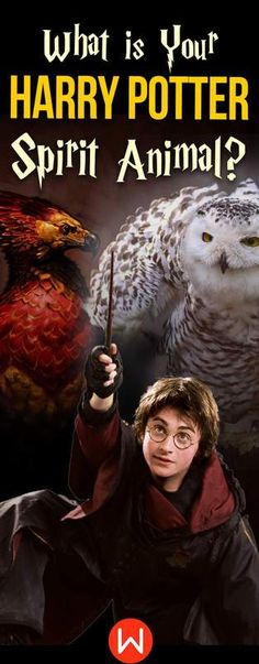 Quiz: What is Your Harry Potter Spirit Animal? My Spirit Animal/Patronus is a Stag!!