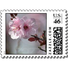 Cherry Blossom Flowers Postage Stamp