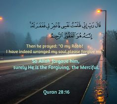 """Then he Prayed: """"O"""" my RABB I have indeed Wronged my soul , Please Forgive me, So ALLAH forgave him Surely He is the Forgiving , The Merciful...(Al-Quran)"""