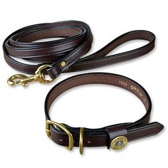Shotgun shell leather collar-bryan will probably want this for the dog if we get a boy pup.
