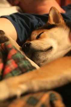 Sleep with my best human ♡ love you dear