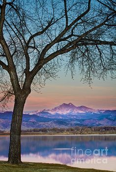 A beautiful early morning Colorado sunrise on the lake with fish jumping and a majestic epic first light view of Longs Peak 14,256. Fine art Colorado nature landscape photography prints, canvas art, acrylic prints and stock images by By James Bo Insogna