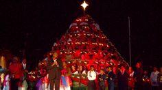 Cayman Island Singing Christmas Tree