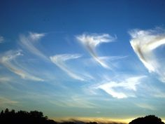 Angel clouds in Irvine.
