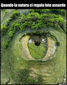 the land is ancient and nature watches over us closely as proved by the amazing piece of land art utilising and manipulating the natural enviroment here Nature Pictures, Cool Pictures, Cool Photos, Amazing Photos, Pictures Of Trees, Beautiful World, Beautiful Places, Amazing Places, Beautiful Sites