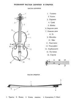 Названия частей скрипки и смычка