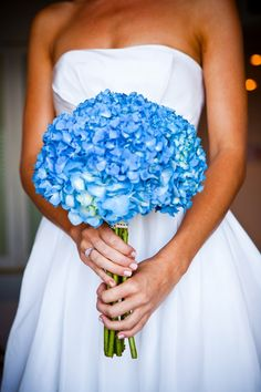 Blue Hydrangea - Hand-tied bouquet, love it! Blue Hydrangea Bouquet, Blue Hydrangea Wedding, Blue Bouquet, Blue Flowers, Hydrangea Shade, Purple Hydrangeas, Flower Colour, Pretty Flowers, Perfect Wedding