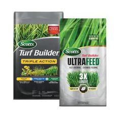 Cottage Farms Direct 0.5 qt. Elijah Blue Fescue Grass (3-Piece)-HD1007 - The Home Depot Fescue Grass, Blue Fescue, Lawn Feed, Turf Builder, Paver Designs, Weed Recipes, Lawn Fertilizer, Grass Type