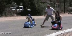 Try to guess who wins this extremely important race. | 26 Things That Will Turn Your Bad Day Around In An Instant omg!