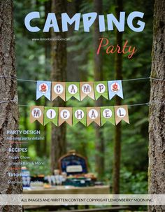 PARTY PLAN  Kids Birthday Party Plan Camping by LemonberryMoon, $9.99