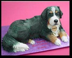 Awesome dog cake! Bernese mountain dog cake