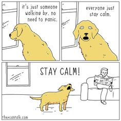 No, you stay calm...