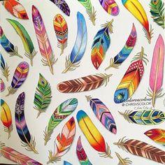 enchanted forest johanna basford feathers - Google keresés