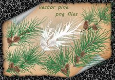 Pine Vector by on DeviantArt Pine, Vectors, Objects, Photoshop, Artist, Pine Tree, Artists