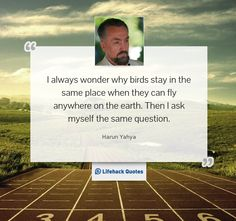 """""""I always wonder why birds stay in the same place when they can fly anywhere on the earth. Then I ask myself the same question."""" -- Harun Yahya"""