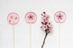 Homemade cherry blossom lollipops by Ruth Black