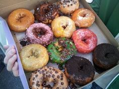 Utah's Donut Hall of Fame: Top 10 Places to Get Insanely Delicious Donuts in the Beehive State