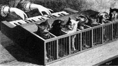8 incredibile instrumente muzicale