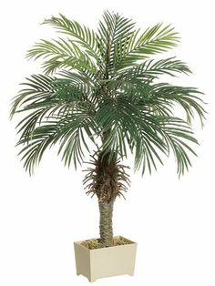 2 Artificial Palm Trees by Gordon Companies, Inc. $210.00. Please refer to SKU# ATR25759703 when you inquire.. Picture may wrongfully represent. Please read title and description thoroughly.. Shipping Weight: 17.00 lbs. Brand Name: Gordon Companies, Inc Mfg#: 30665970. This product may be prohibited inbound shipment to your destination.. 2 Artificial Palm Trees/potted/inside use or outside use/4'H/made of polyester, plastic, and wire/you get two trees