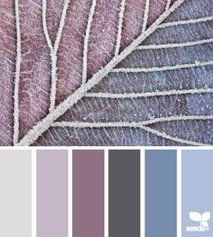 frosted tones by imelda