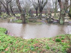 After lots of rain this is what happens at KEY HILL CEMETERY. Birmingham England