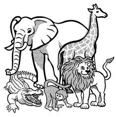 Löwe Ausmalbild Ausmalbilder Für Kinder Afrika Schule Pinterest