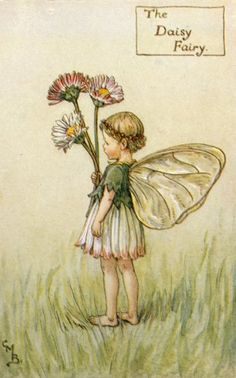 The Daisy Fairy by Cicely Mary Barker
