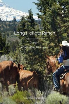 All about vacations at Long Hollow Ranch in central Oregon. This historic pioneer ranch offers cattle drives, fly-fishing and much more.
