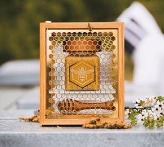 Honey Packaging, Cool Packaging, Packaging Design, Honey Store, Honey Logo, Honey Brand, Honeycomb Pattern, Manuka Honey, Jar Lids