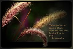 Proverbs 18:21  NIV,,,,,The tongue has the power of life and death, and those who love it will eat its fruit.