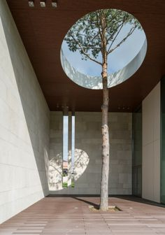 Zhukovka XXI / UNK PROJECT Architects outdoor space round skylight tree