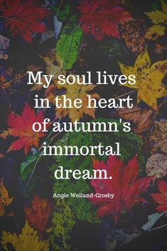 16 Autumn Quotes to Enchant and Deepen the Soul Soul Quotes, Nature Quotes, Life Quotes, Dream Quotes, Ending Quotes, Season Quotes, Summer Quotes, Fall Time Quotes, Autumn Aesthetic