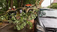 Blitze und Regen: Nach der Hitzewelle folgt Sturm
