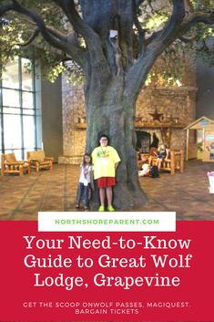 This post gives you the low down on scoring bargain tickets, Wolf passes, the water park, MagiQuest and more! Big Family, Your Family, Great Wolf Lodge, Travel With Kids, Grape Vines, Need To Know, Traveling, Vacation, Park