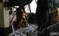 Where are my foot ?  #Fishing #peche #sea #mer #net #filet #seaboat #north #nord #Leopolismagazine #LPM #Lille #LPM0 #photojournalism #editorial